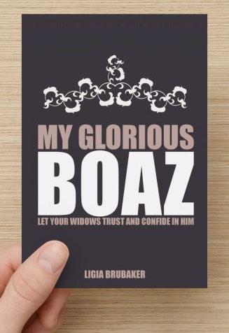 book cover 2 Ligia Brubaker